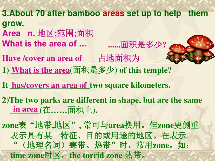 3.About 70 after bamboo