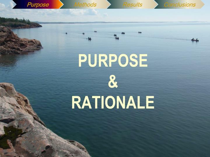 Purpose rationale