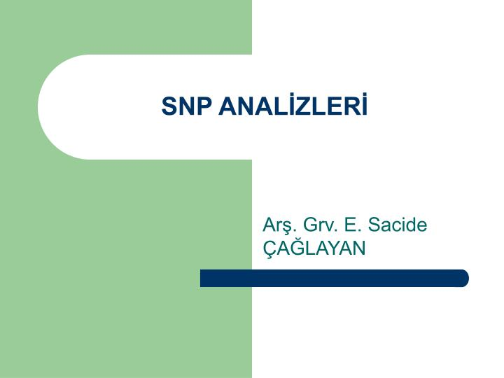 Snp anal zler