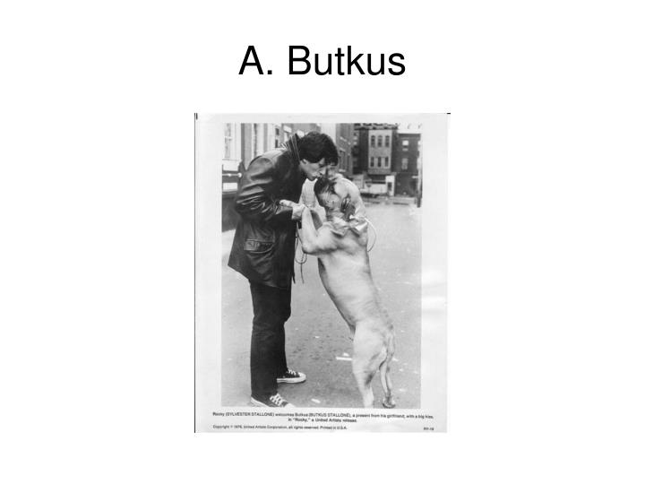 A. Butkus