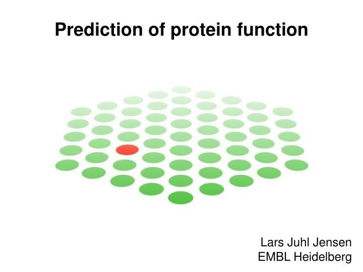 prediction of protein function n.