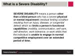what is a severe disability