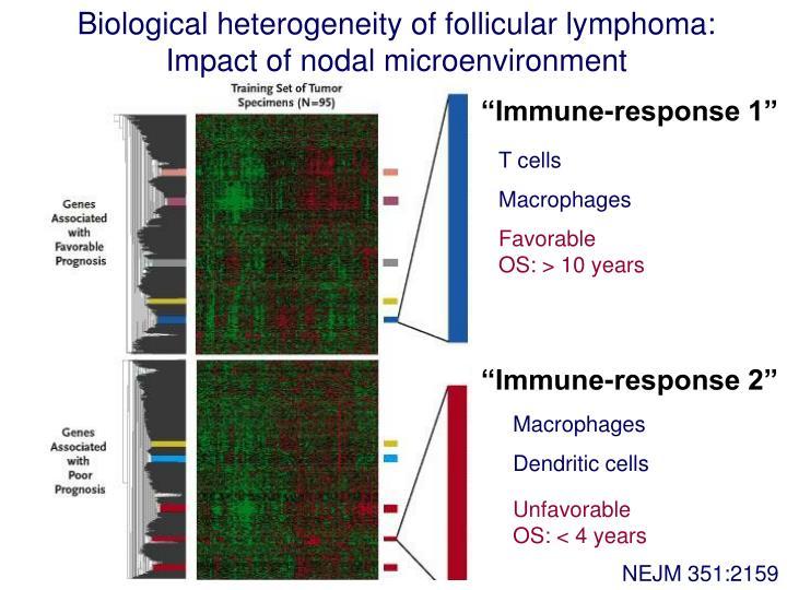 Biological heterogeneity of follicular lymphoma: