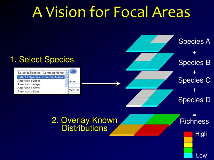 A Vision for Focal Areas