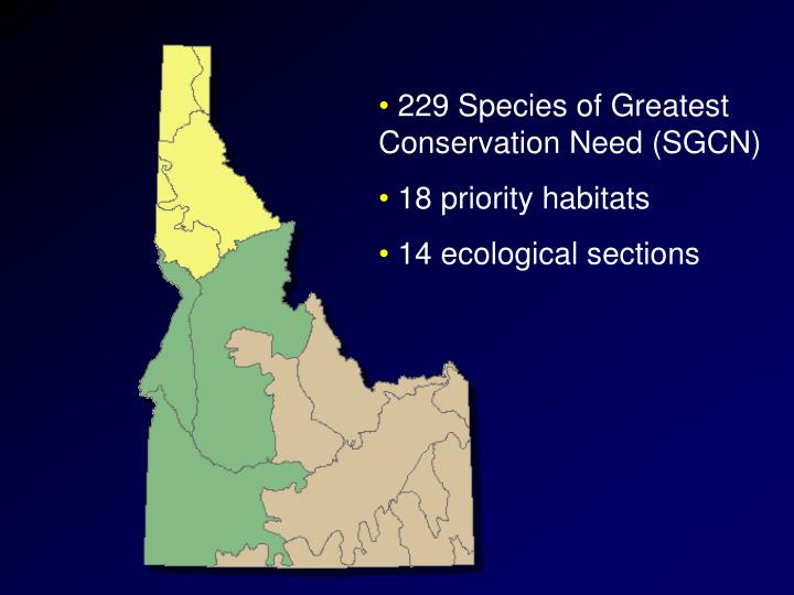 229 Species of Greatest Conservation Need (SGCN)
