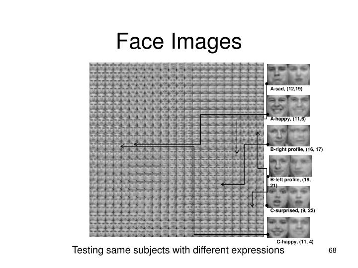 Face Images