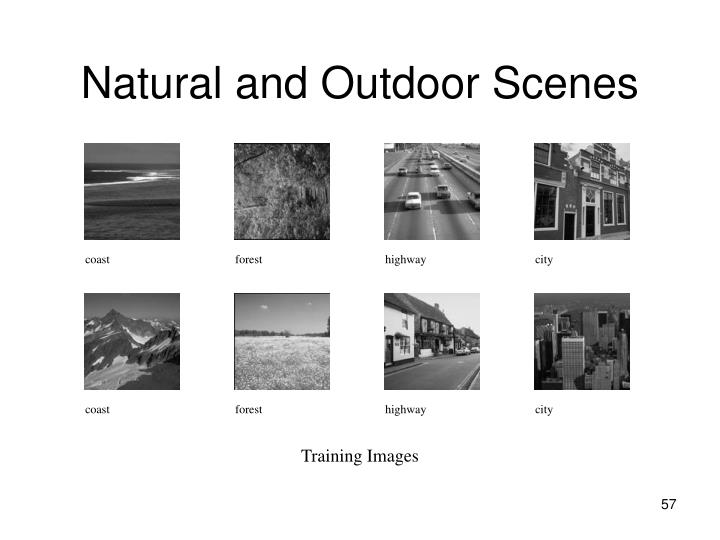 Natural and Outdoor Scenes