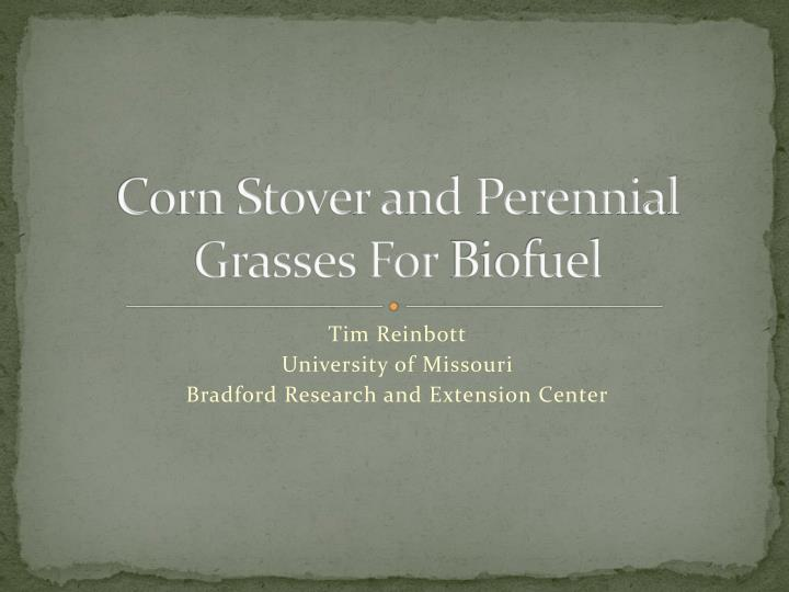 corn stover and perennial grasses for biofuel n.