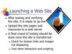 launching a web site