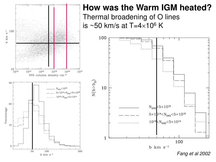 How was the Warm IGM heated?