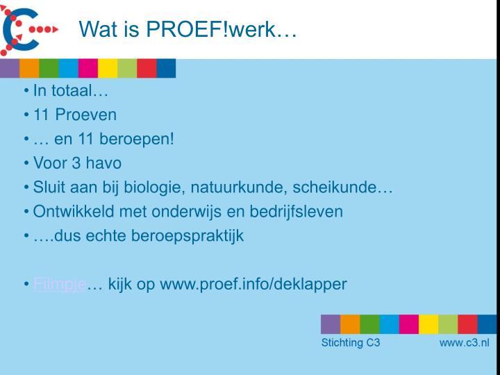 Wat is PROEF!werk…