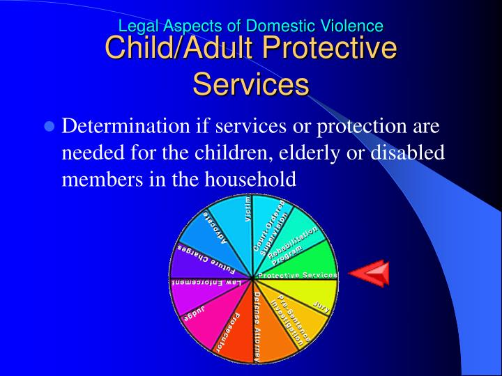 Child/Adult Protective Services