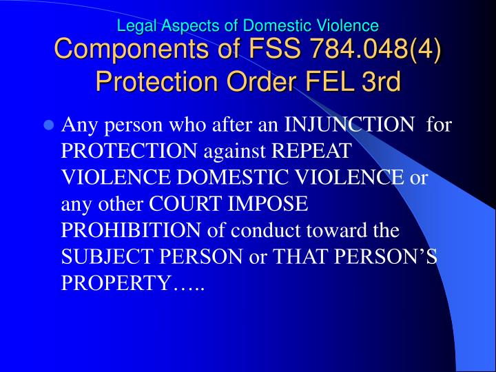 Components of FSS 784.048(4) Protection Order FEL 3rd
