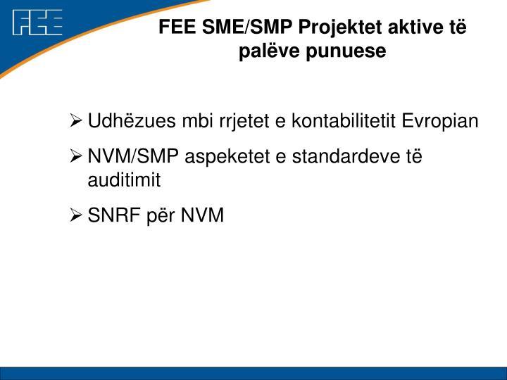FEE SME/SMP Projektet aktive të palëve punuese