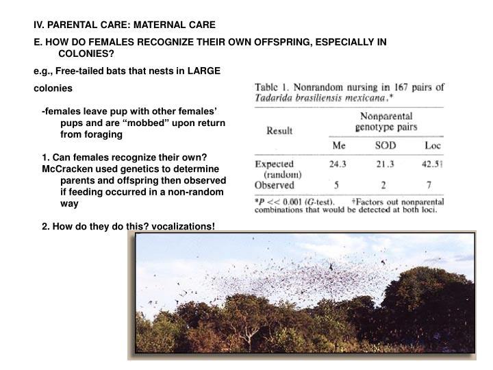 IV. PARENTAL CARE: MATERNAL CARE