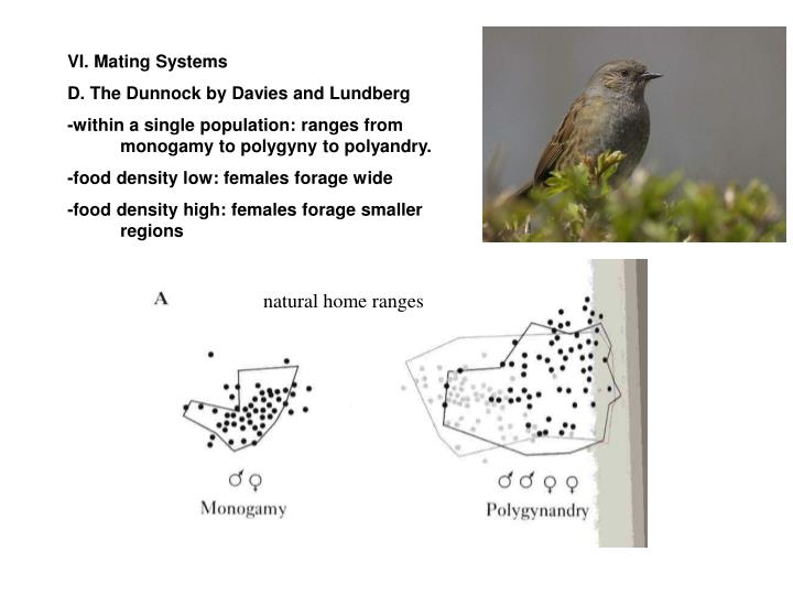 VI. Mating Systems