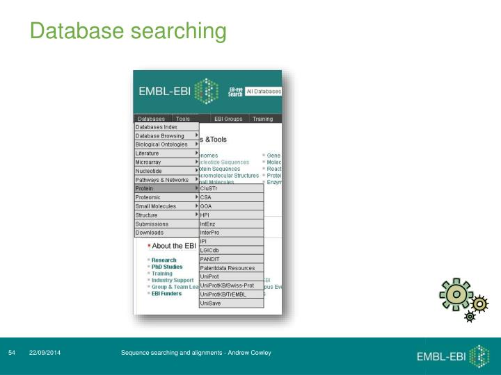 Database searching