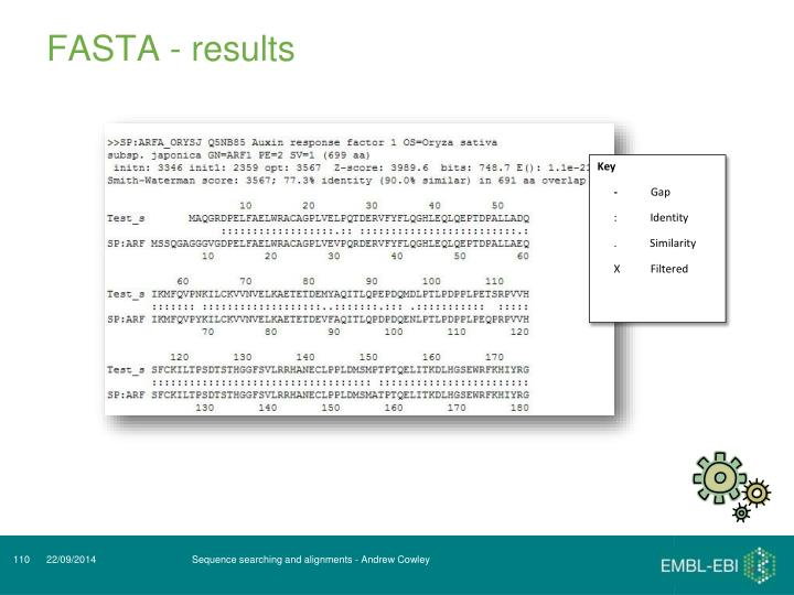 FASTA - results
