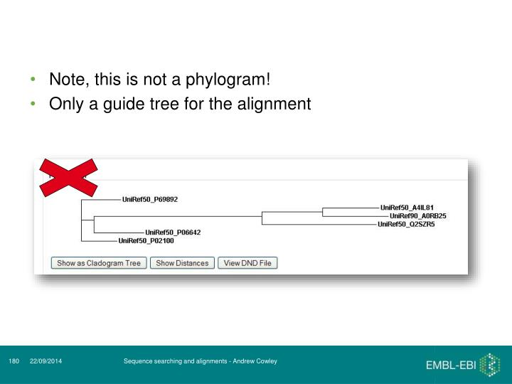 Note, this is not a phylogram!