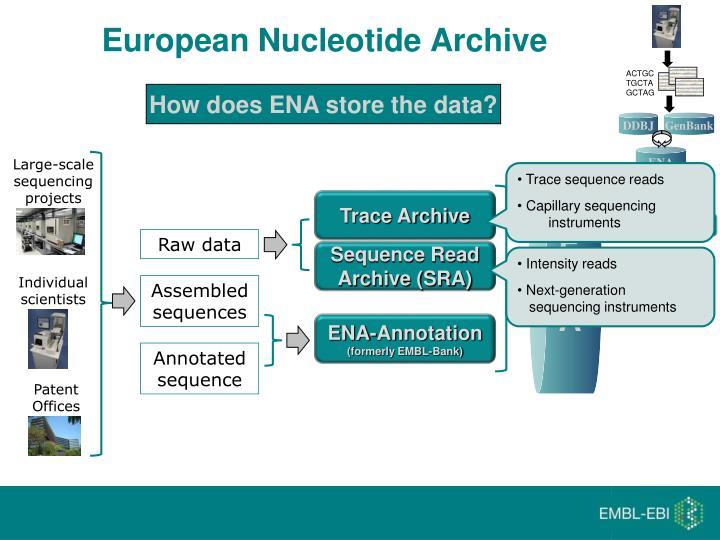 European Nucleotide Archive