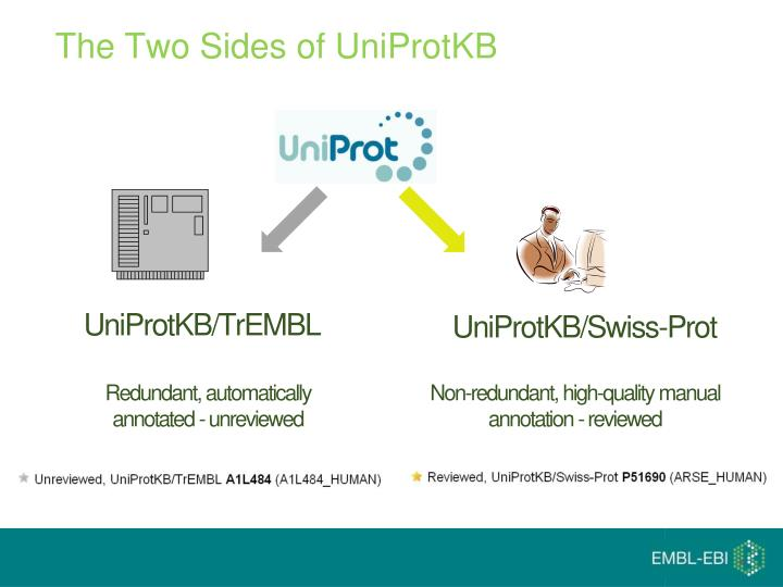 The Two Sides of UniProtKB