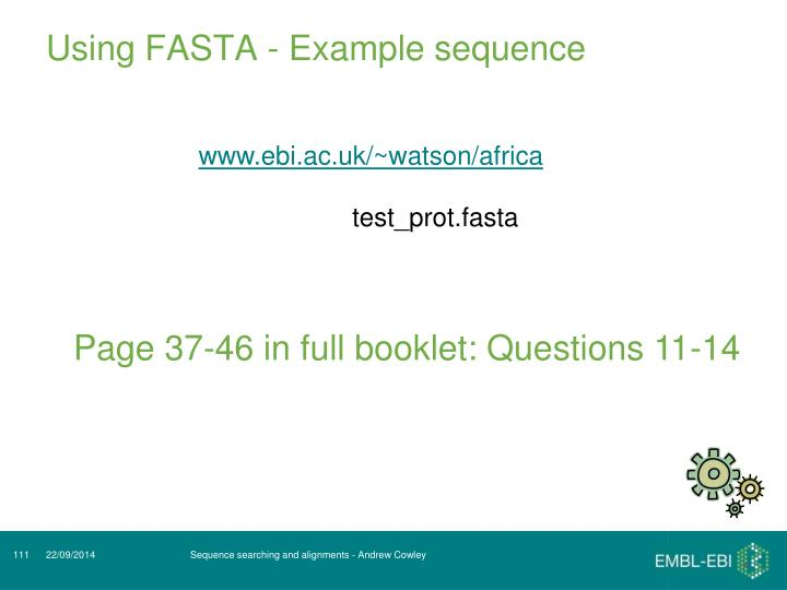 Using FASTA - Example sequence