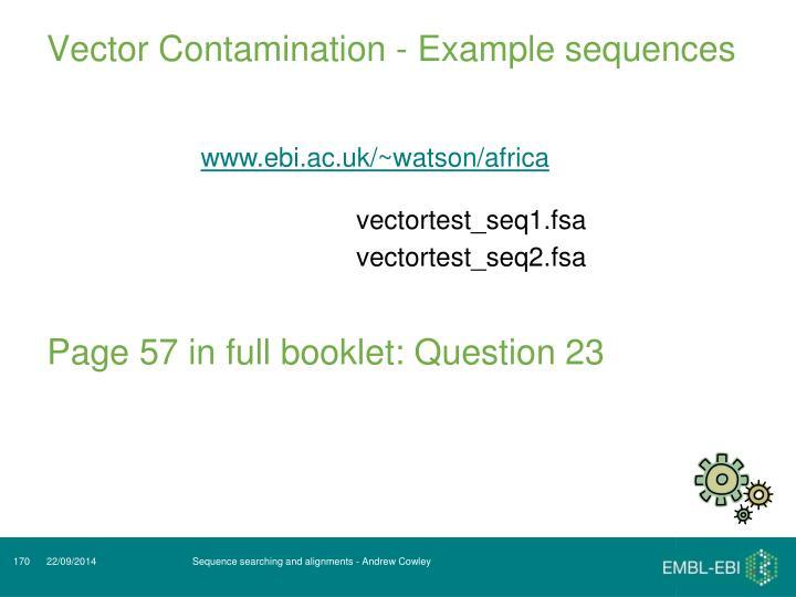 Vector Contamination - Example sequences
