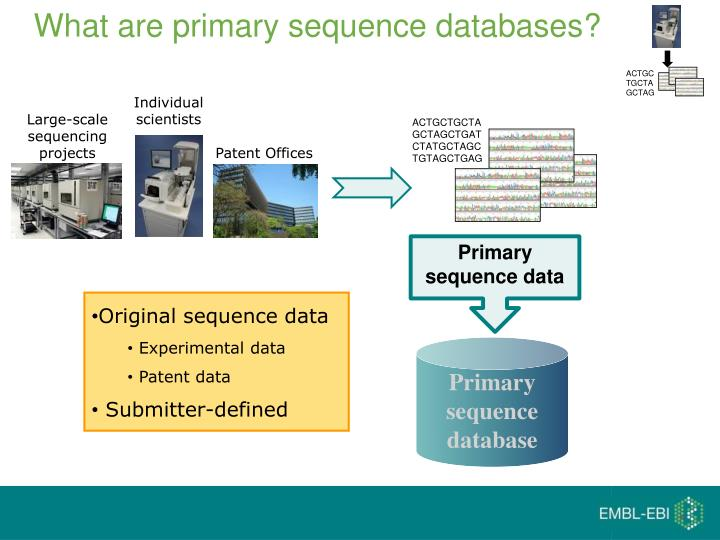 What are primary sequence databases?