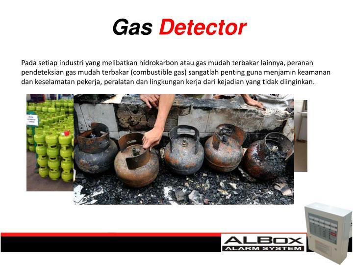 Pada setiap industri yang melibatkan hidrokarbon atau gas mudah terbakar lainnya, peranan pendeteksian gas mudah terbakar (combustible gas) sangatlah penting guna menjamin keamanan dan keselamatan pekerja, peralatan dan lingkungan kerja dari kejadian yang tidak diinginkan.