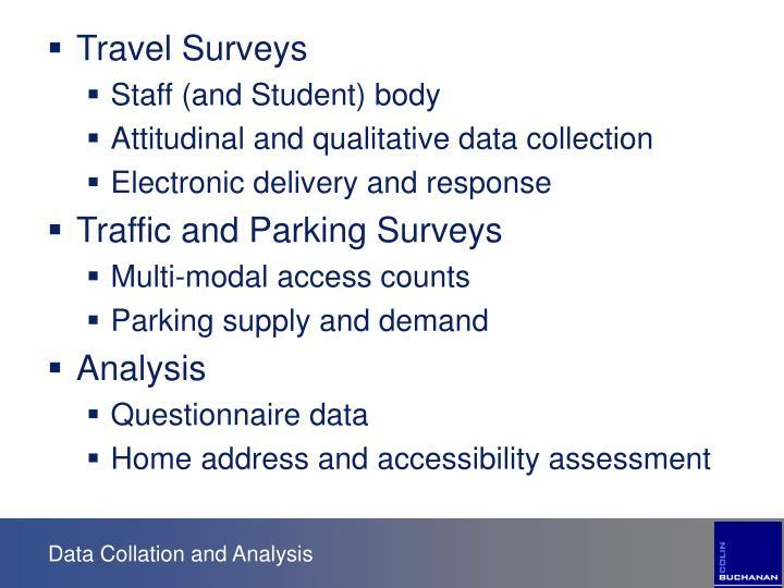 Travel Surveys