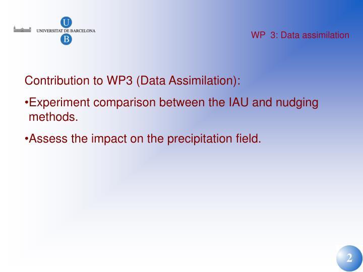 Wp 3 data assimilation