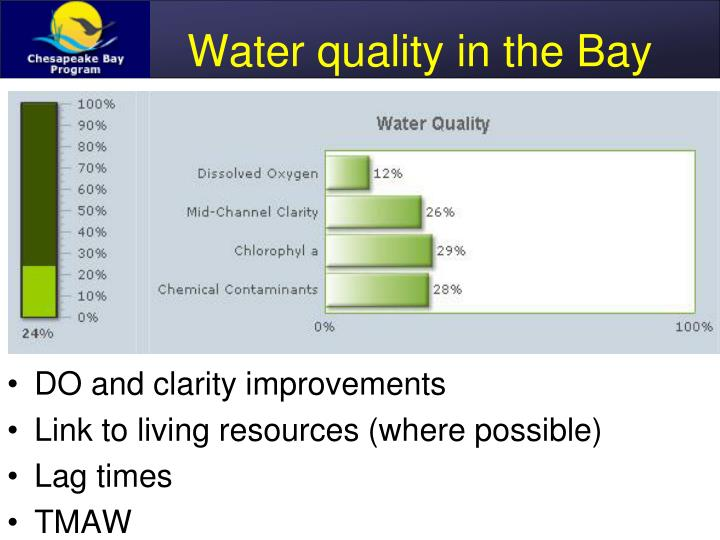 Water quality in the Bay
