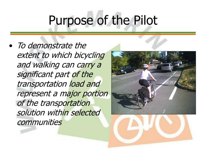 Purpose of the Pilot