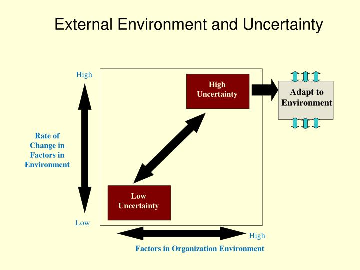 External Environment and Uncertainty