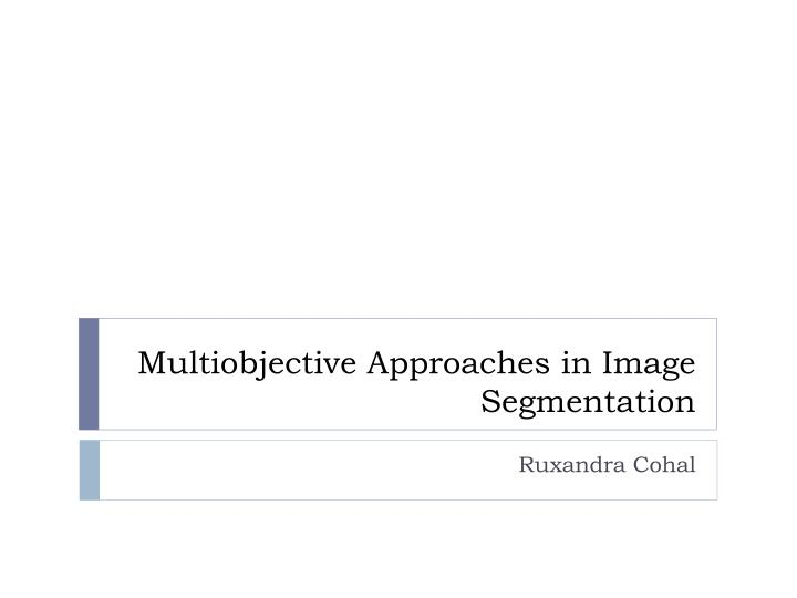 multiobjective approaches in image segmentation n.