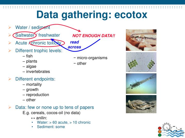 Data gathering: ecotox