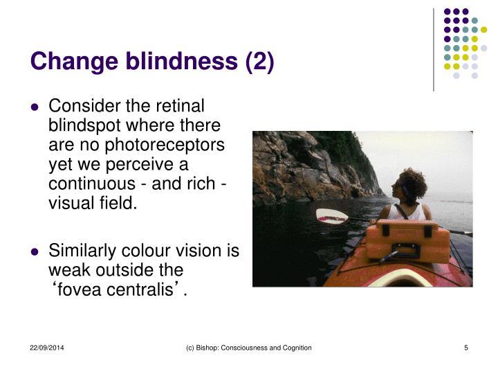 Change blindness (2)