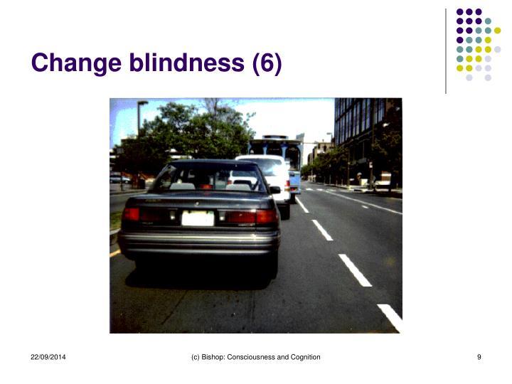 Change blindness (6)