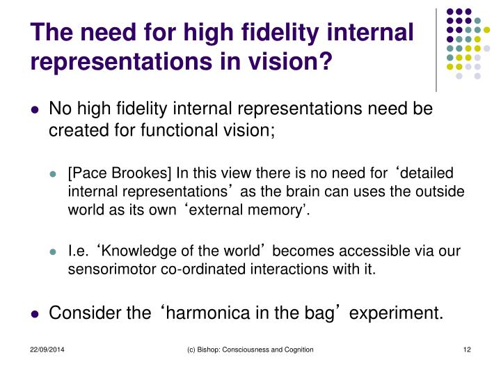 The need for high fidelity internal representations in vision?