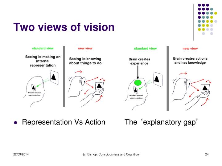Two views of vision