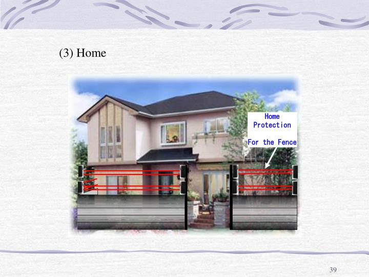 (3) Home