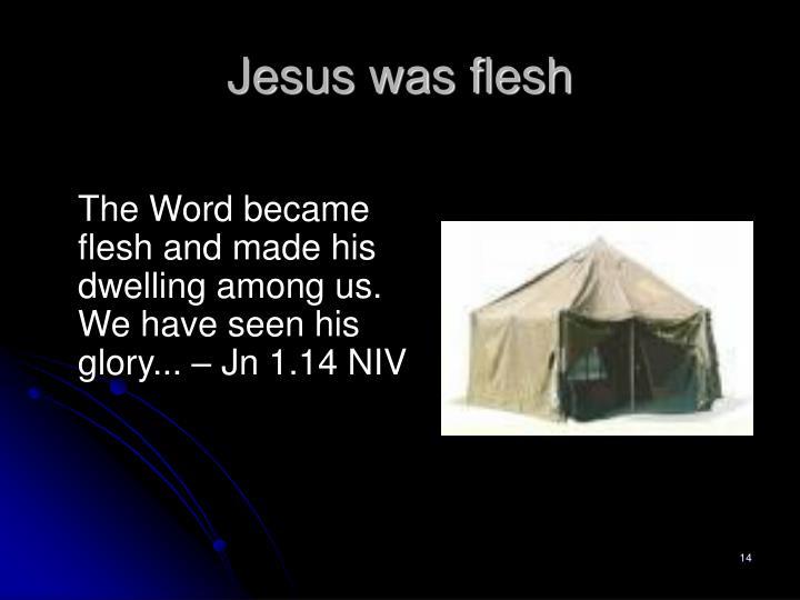 Jesus was flesh