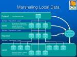 marshaling local data