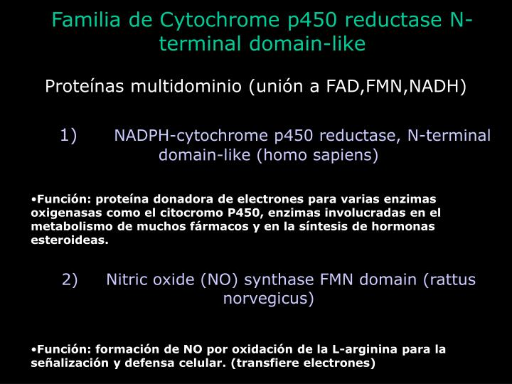 Familia de Cytochrome p450 reductase N-terminal domain-like