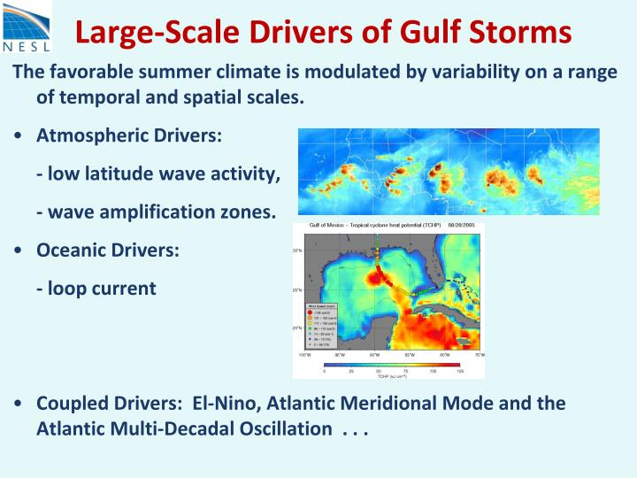 Large-Scale Drivers of Gulf Storms