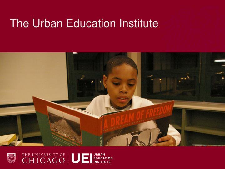The Urban Education Institute