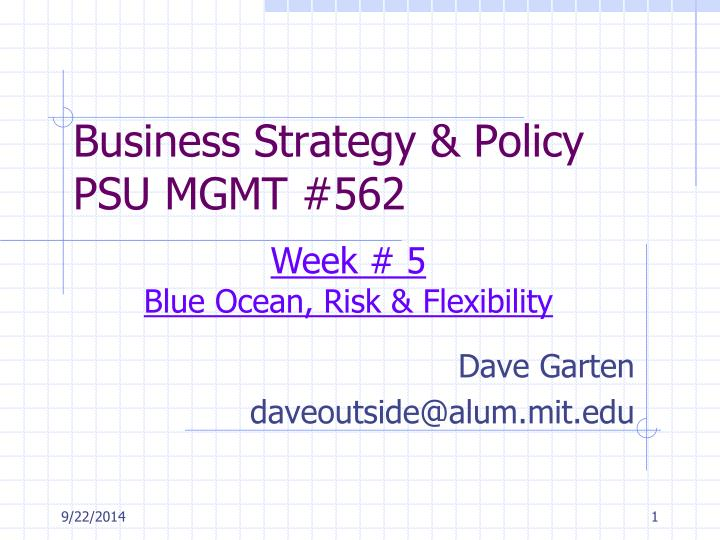 business strategy policy psu mgmt 562 n.
