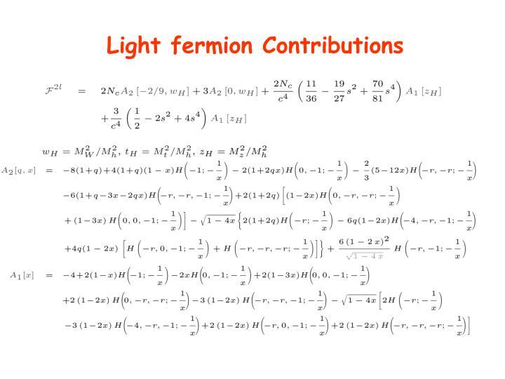 Light fermion Contributions