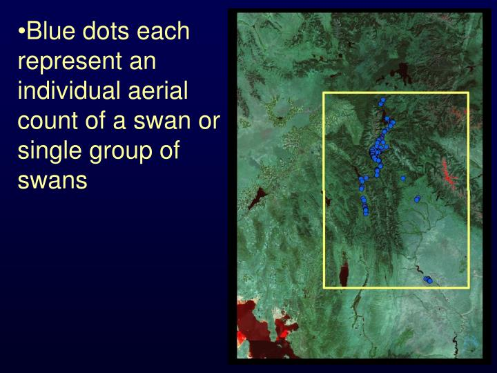 Blue dots each represent an individual aerial count of a swan or single group of swans