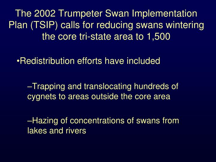 The 2002 Trumpeter Swan Implementation Plan (TSIP) calls for reducing swans wintering the core tri-state area to 1,500